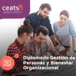DIPLOMADO GESTIÓN DE PERSONAS Y BIENESTAR ORGANIZACIONAL